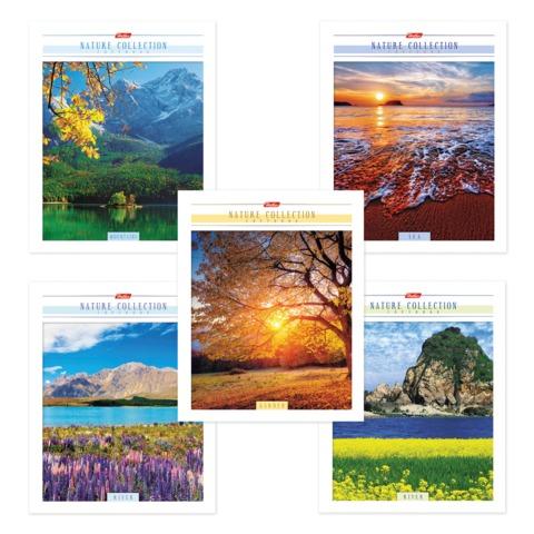 """Тетрадь 80 л., HATBER, клетка, мелованный картон обложка, """"Nature Collection"""" (""""Природа""""), 80Т5В1"""
