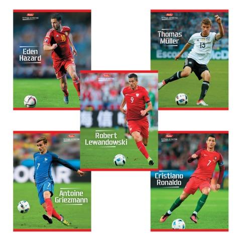 Тетрадь 48 л., HATBER, клетка, мелованный картон обложка, «Футбол — Герои чемпионата Европы»