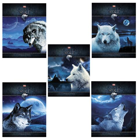 """Тетрадь 48 л., HATBER VK, клетка, обложка мелованный картон, """"Душа волка"""", 48Т5С1"""