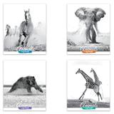 Тетрадь 48 л. BRAUBERG «ЭКО», клетка, обложка мелованный картон, «Дикие животные»