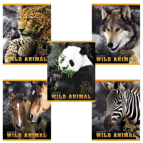 """Тетрадь 24 л., HATBER, линия, обложка мелованный картон, """"Мир животных"""", 24Т5B2"""