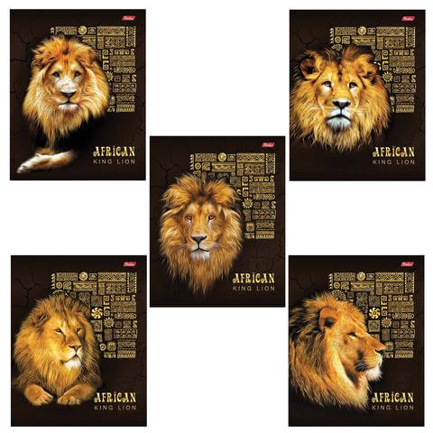 """Тетрадь 48 л., HATBER, клетка, 3D-лак и матовая ламинация, """"KING LION"""", 48Т5офлВ1"""