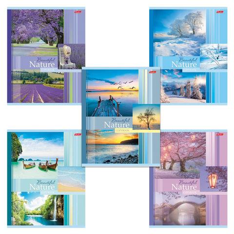 """Тетрадь 48 л., HATBER, клетка, обложка мелованный картон, """"Beautiful nature"""", 48Т5В1"""