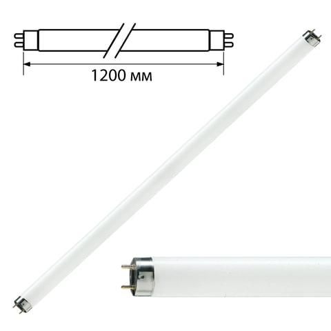 Лампа люминесцентная PHILIPS TL-D 36W/<wbr/>33-640, 36 Вт, цоколь G13, в виде трубки 120 см
