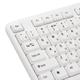 Клавиатура проводная SONNEN KB-100W, PS/<wbr/>2, 104 кнопки, белая