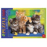 Пазл STANDARD, 500 элементов, А2, «Дружные котята», 340×460 мм, 500ПЗ2 08372