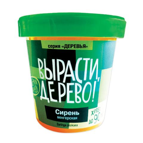 """Набор для выращивания растений ВЫРАСТИ, ДЕРЕВО! """"Сирень венгерская"""" (банка, грунт, семена)"""