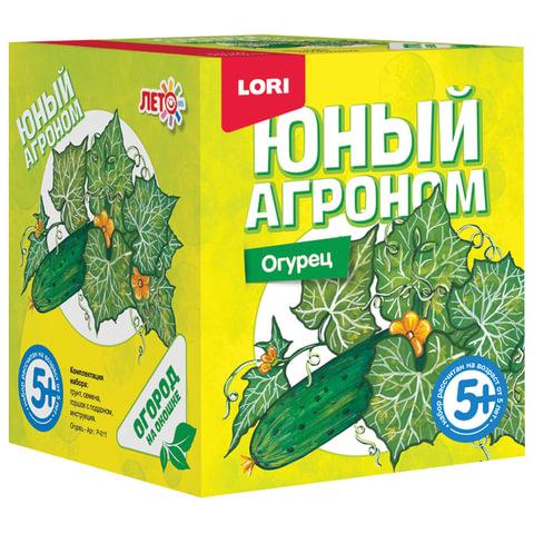 """Набор для выращивания растений ЮНЫЙ АГРОНОМ """"Огурец"""", горшок, грунт, семена, LORI"""