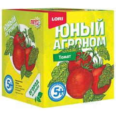 Набор для выращивания растений ЮНЫЙ АГРОНОМ «Томат», горшок, грунт, семена, LORI